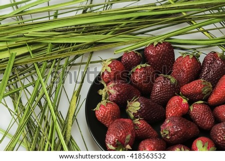 Large strawberry and green grass - stock photo