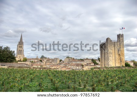 Large view on Saint Emilion. Saint-Emilion is one of the principal red wine areas of Bordeaux, the wines of Saint-Emilion are respected all over the planet - stock photo