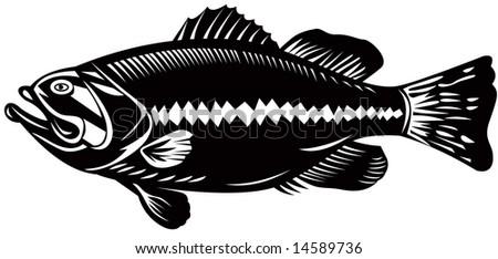 Largemouth bass woodcut style - stock photo