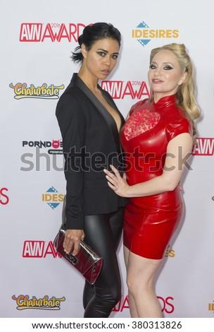 Adult movie film awards
