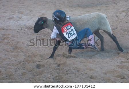 LAS VEGAS - MAY 16 : A boy riding on a sheep during a Mutton Busting contest at the Helldorado days Rodeo , A Professional Rodeo held in Las Vegas , Nevada on May 16 2014  - stock photo