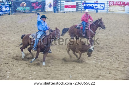 LAS VEGAS - NOV 05 : Cowboy Participating in a Calf roping Competition at the Indian national finals rodeo held in Las Vegas, Nevada on November 05 2014 - stock photo