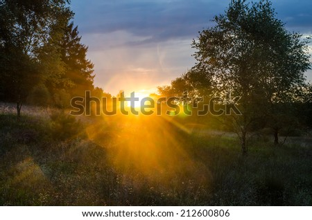 last sunbeams (Germany, Lueneburger Heide) - stock photo