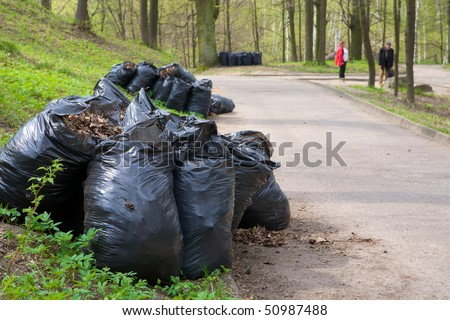 Last year leaves in the bags - stock photo
