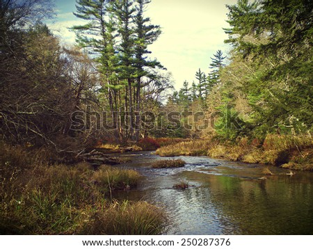 Late Fall Trout Stream - stock photo