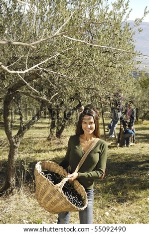 latin woman in a olive trees field - stock photo