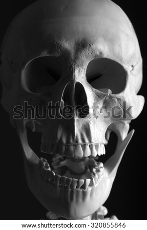 Laughing Skeleton on black background - stock photo