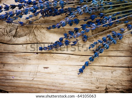 Lavender border over wood background - stock photo
