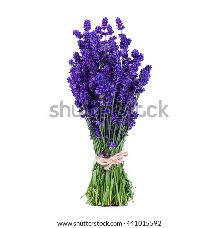 Lavender bouquet standing on white table, isolated