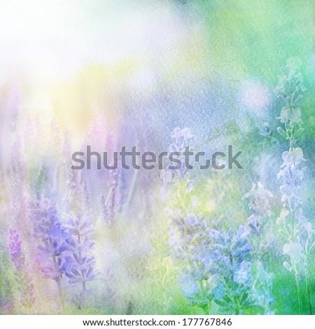 lavender dreams - stock photo