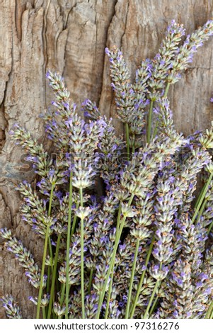 Lavender flowers in bloom on old wooden surface - stock photo