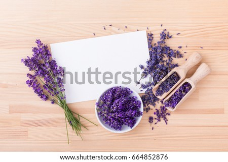 lavender flowers with copy space/ lavender flowers / lavender