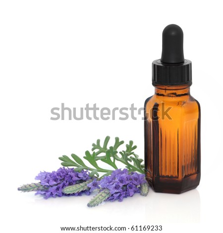 Lavender herb flower leaf sprigs with an aromatherapy essential oil dropper bottle, isolated over white background.
