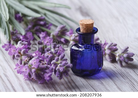 lavender oil in a glass bottle on a background of fresh flowers. Horizontal close-up   - stock photo