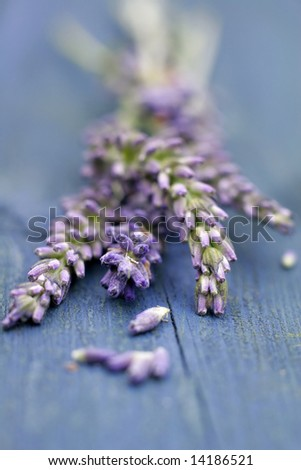 Lavender on blue wooden table - stock photo