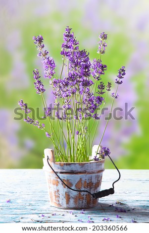 lavenders on wooden table with nature lavender background. - stock photo