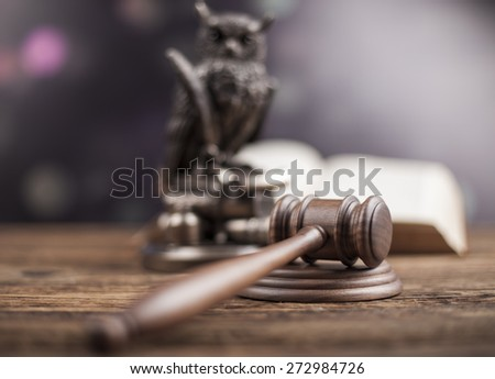 Law concept, owl in a judge gavel concept - stock photo