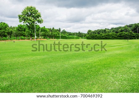 Grass Field Free Video Clips - (151 Free Downloads)