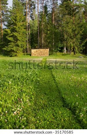 lawn cutting in progress - stock photo