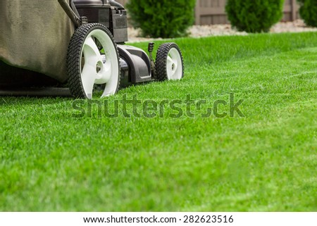 Lawn Stock Images Royalty Free Images Amp Vectors
