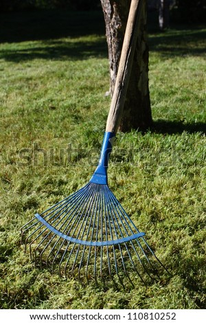 Lawn rake at a tree in the evening orchard