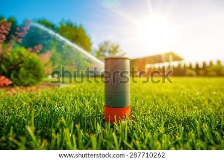 Lawn Sprinkler in Action. Garden Sprinkler Watering Grass. Automatic Sprinklers. - stock photo