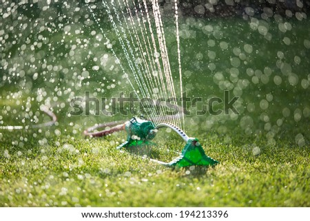 Lawn sprinkler spaying water over green grass. Irrigation system. backlight, shallow depth of field blurred bokeh sun effect