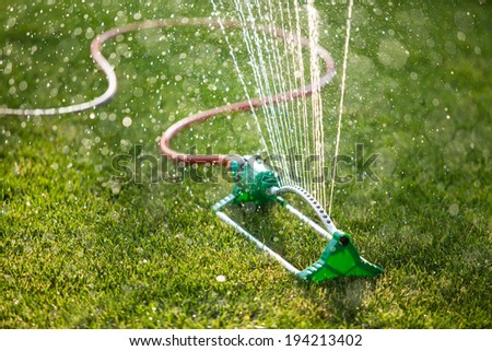 Lawn sprinkler spaying water over green grass. Irrigation system. backlight, shallow depth of field blurred bokeh sun effect - stock photo
