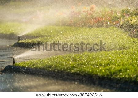 lawn sprinkler spraying water - stock photo