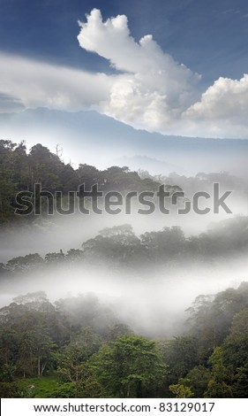 Layer of misty fog surrounding a tropical jungle in the early morning with a cloudy blue sky on a mountain range in the highland of Gunung Raya, Langkawi Island. - stock photo