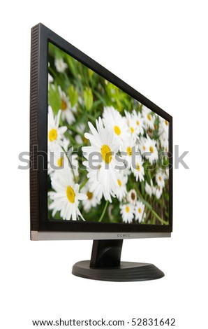Lcd monitor with camomiles. On screen my photo - stock photo