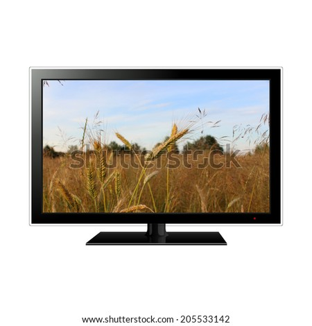 lcd tv with wheat field in the screen - stock photo