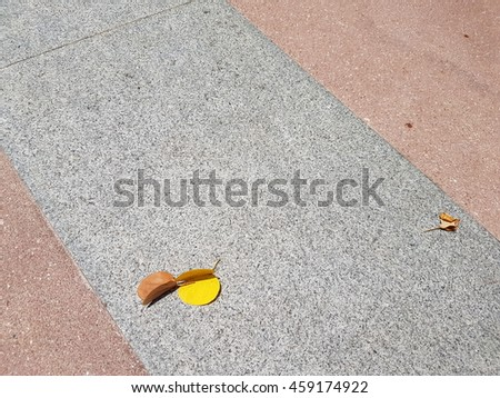 leaf and floor