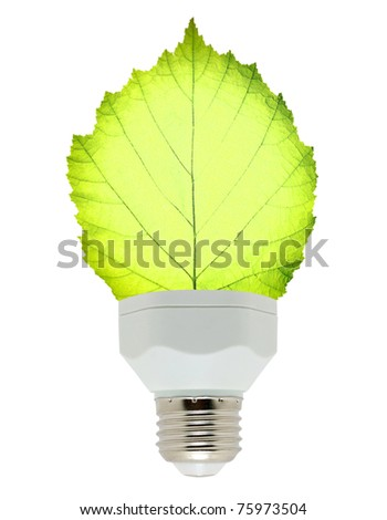 leaf and lamp - stock photo