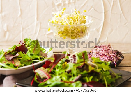 leaf green Salad with sprouts tasty food for diet on a wooden background
