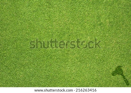 Leaf icon on green grass texture and background