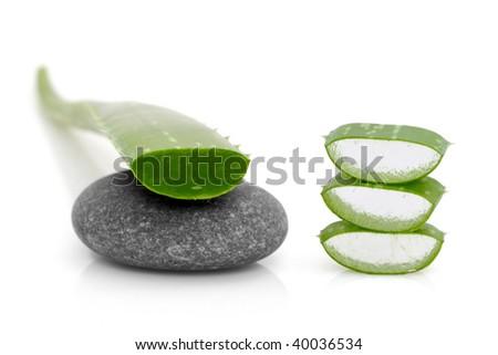 leaf of aloe vera on a stone - stock photo