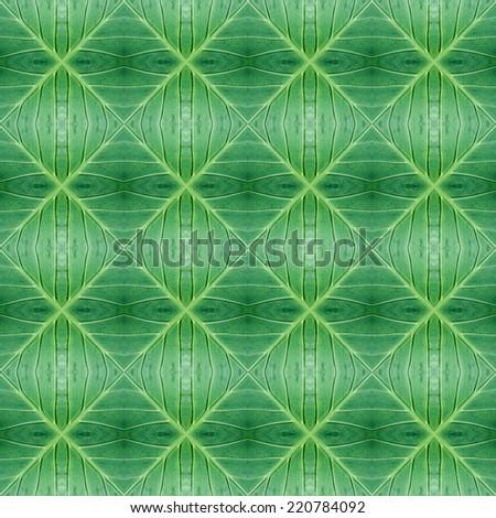 Leaf ornamental pattern - stock photo