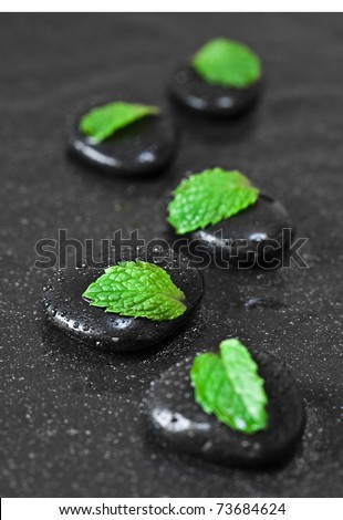 Leafs on wet black pebbles. SPA concept.