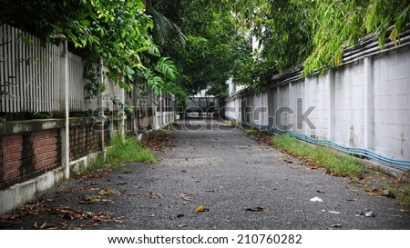 Leafy Backstreet Background - stock photo
