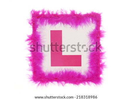 Learner Hen Party plate cutout - stock photo
