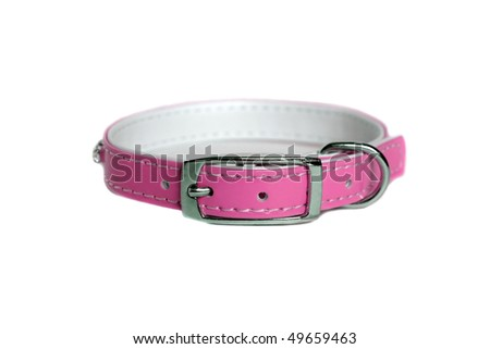 leather animal collar isolated on white - stock photo
