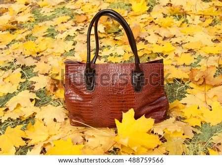 Leather bag with autumn leaves. Autumn bag sales concept
