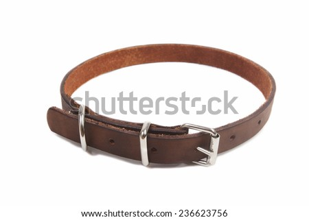 Leather brown dog collar on a white background - stock photo