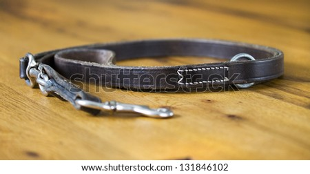Leather Dog Lead - stock photo