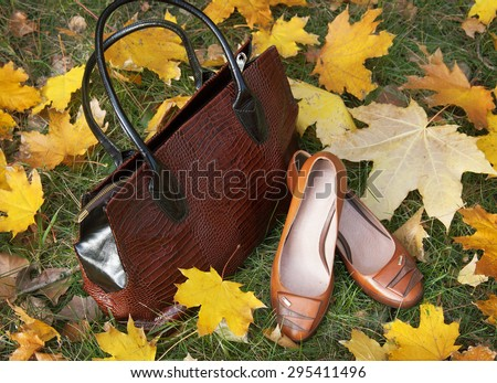Leather shoes and bag with autumn leaves. Winter boots and bags collection sales - stock photo
