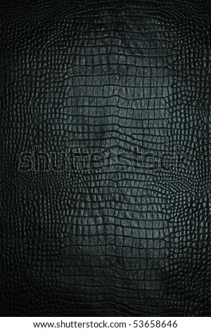 leather texture black background,crocodile leather - stock photo