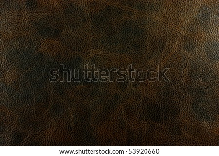 leather texture brown background - stock photo