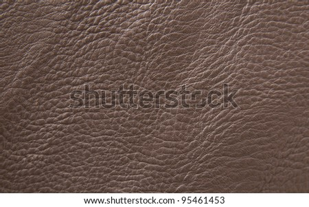 leather texture. Closeup of skin surface - stock photo