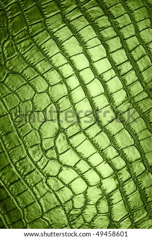 leather texture  crocodile for background green - stock photo